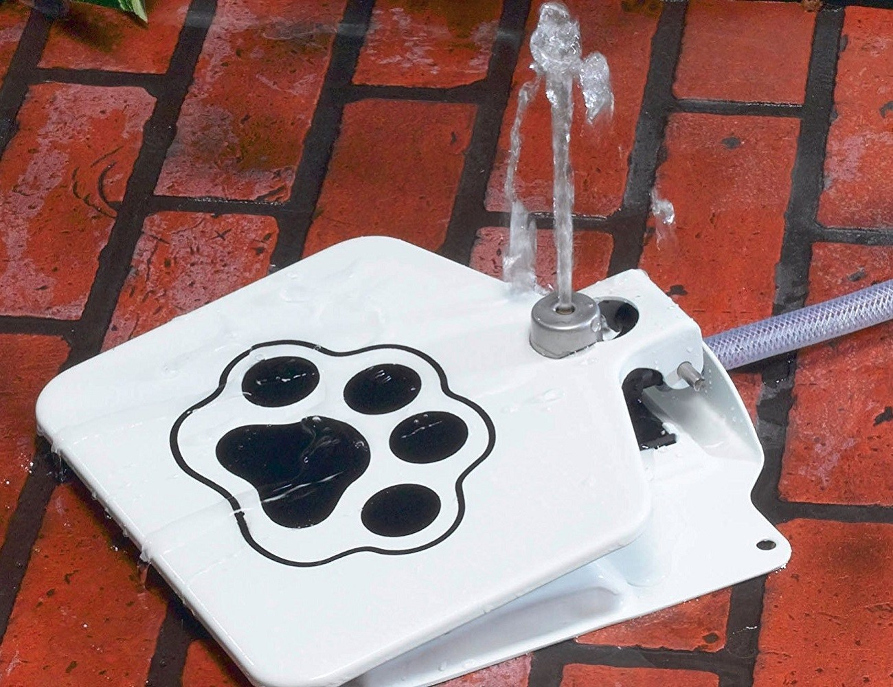 Awesome Doggie Fountain