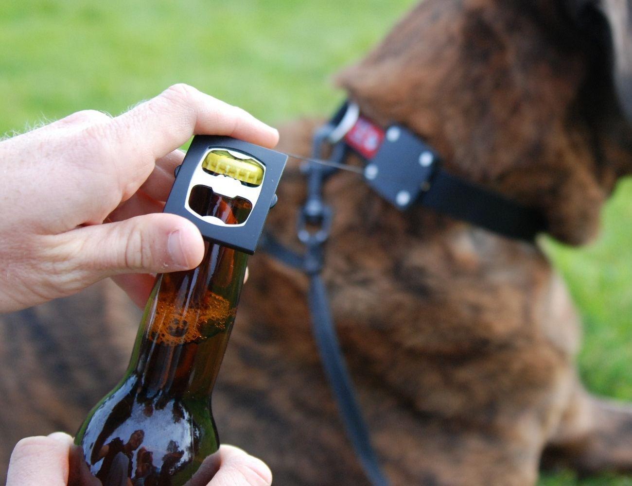 Bark4Beer Dog Collar