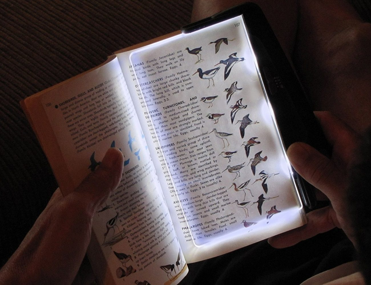 hug neck book modes handsfree adjustable new product light led flexible reading brand gadgets necklace night wholesale
