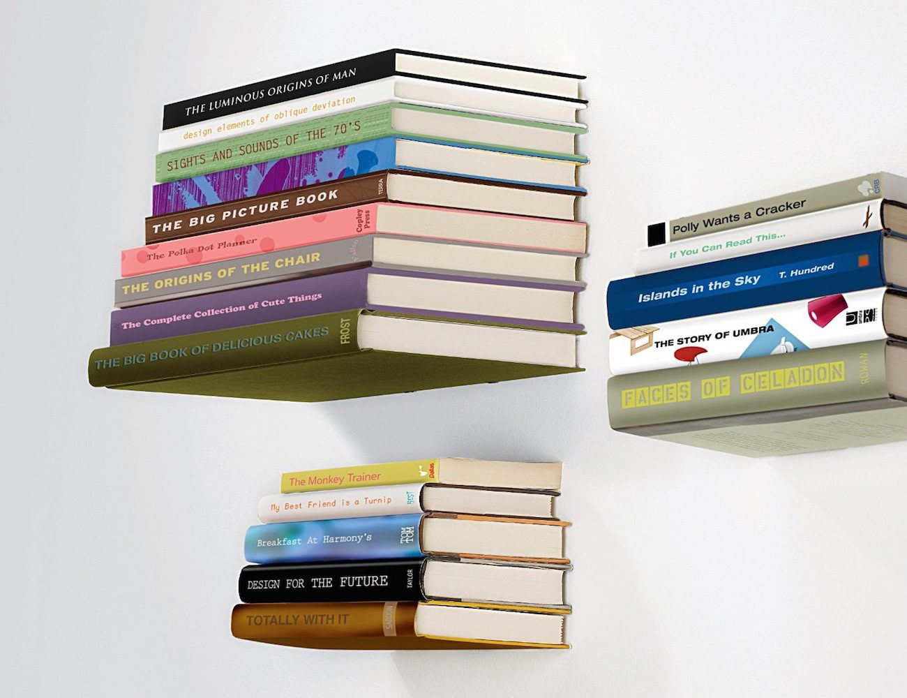 Fly-brary Book Shelf