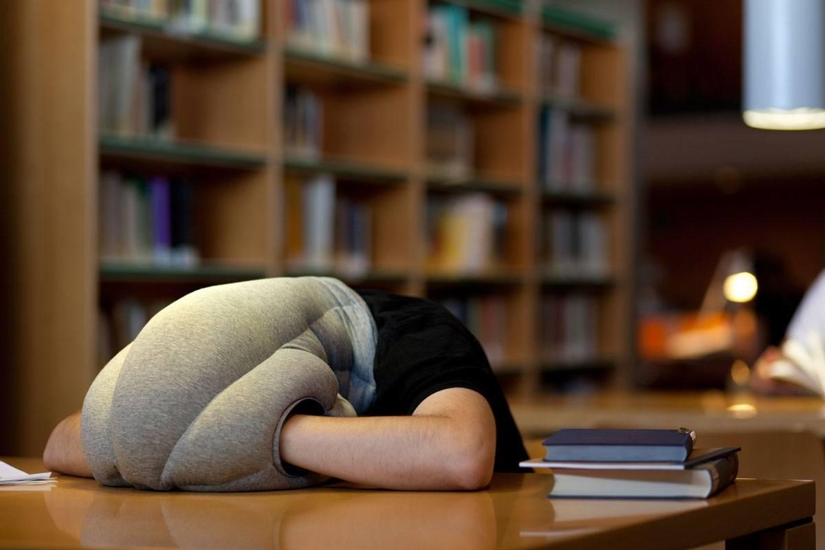 Ostrich Nap Pillow