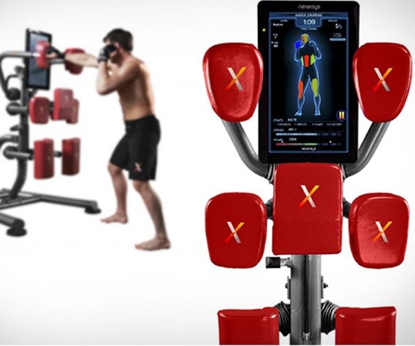 Nexersys boxing unit for your home workout regime