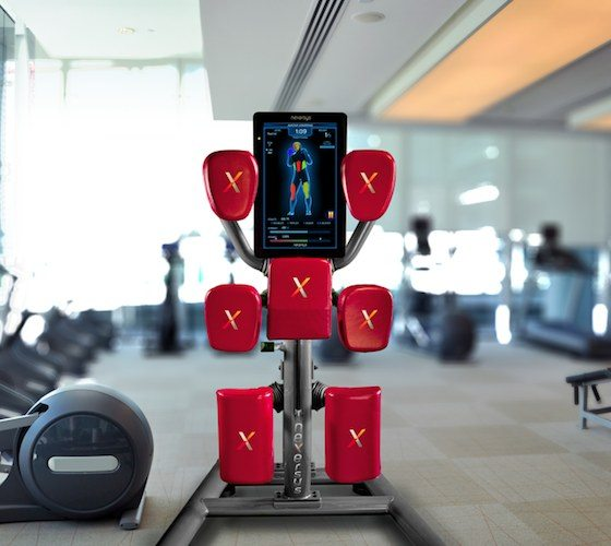 Nexersys Boxing Unit – For Your Home Workout Regime