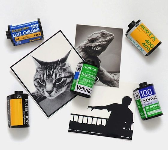 Recycled+Film+Roll+Magnets