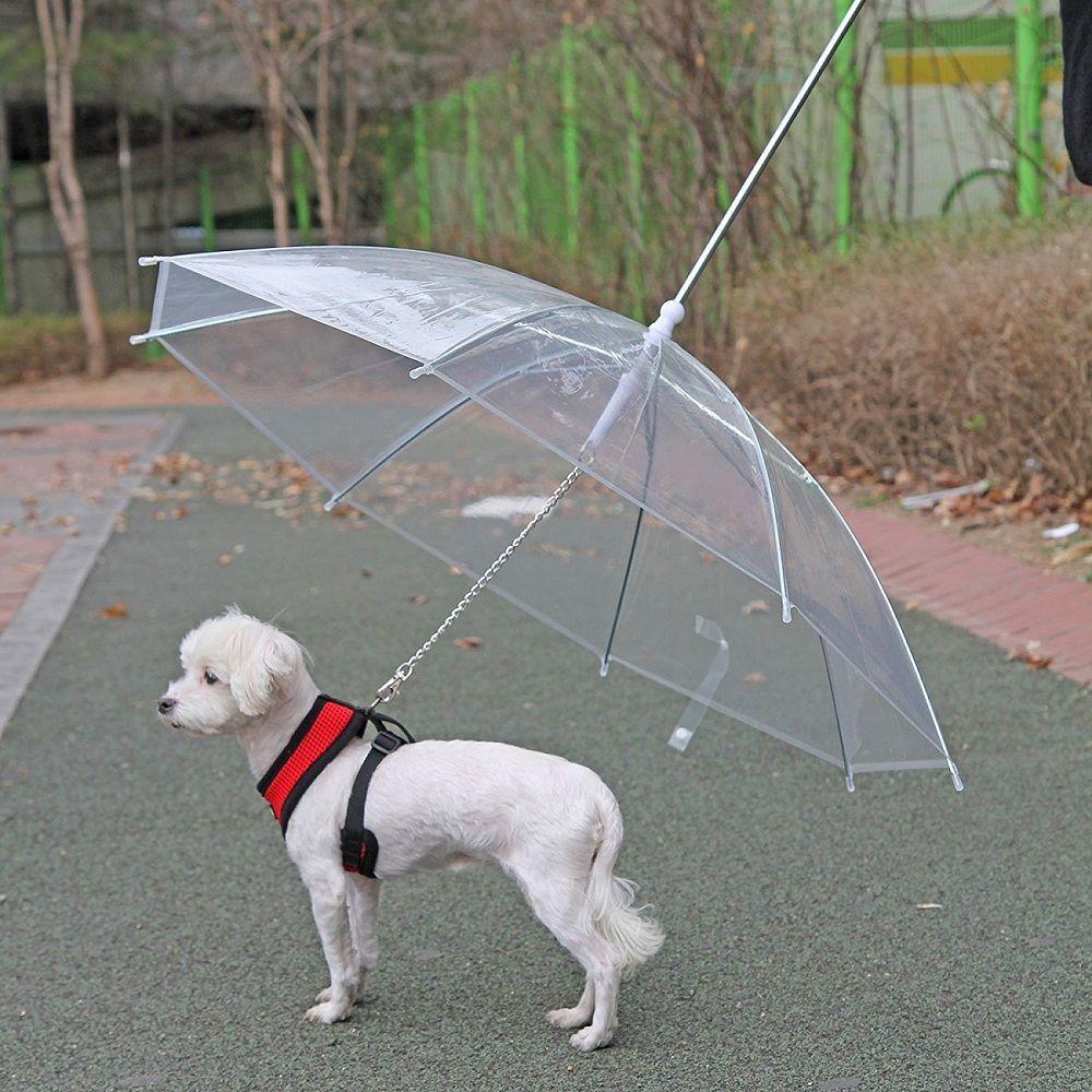 Pet Umbrella With Leash