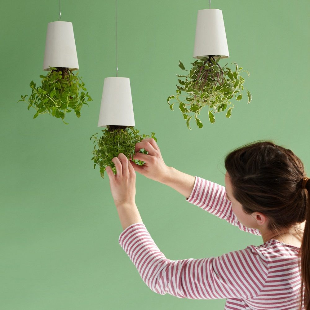 Sky+Planter+Ceramic+Small+Triple+Pack+With+Ceiling+Extensions
