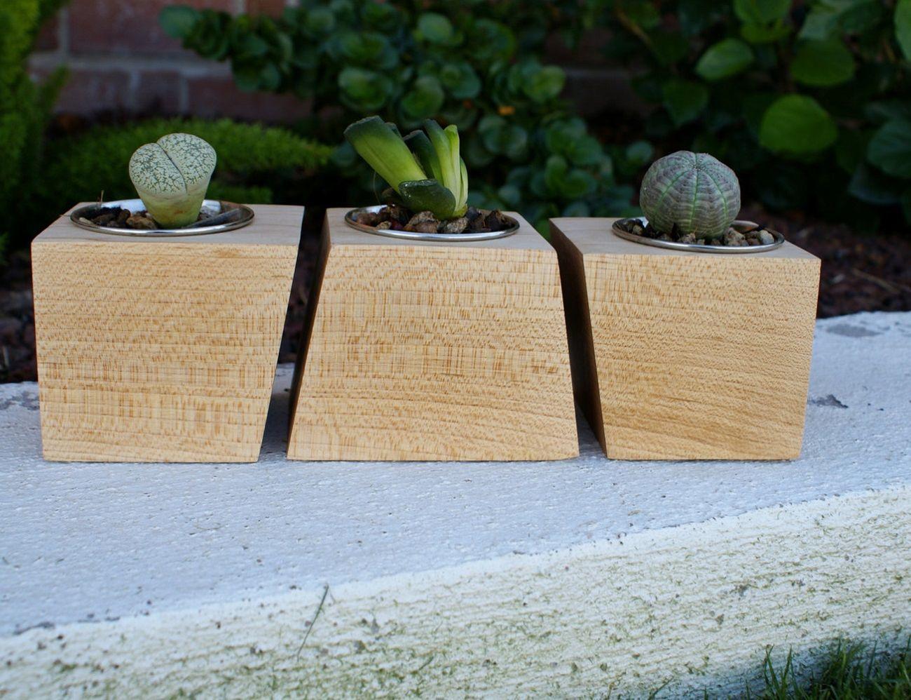 Special Edition Walnut Boxcar Planters