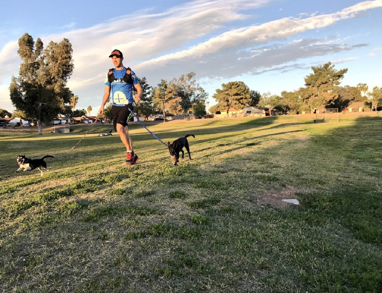 Stunt Runner Hands-Free Leash