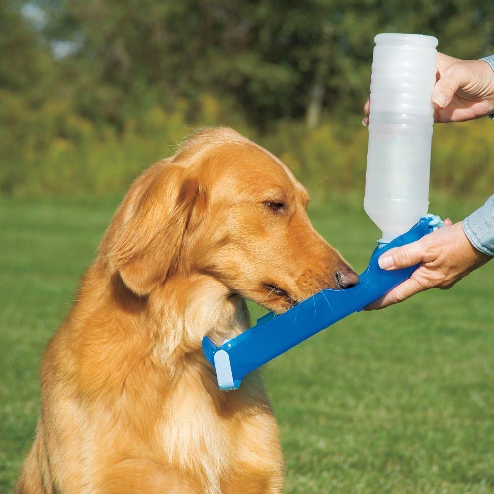 Handi-Drink Dog Water Bottle