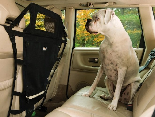 Kurgo Backseat Pet Barrier