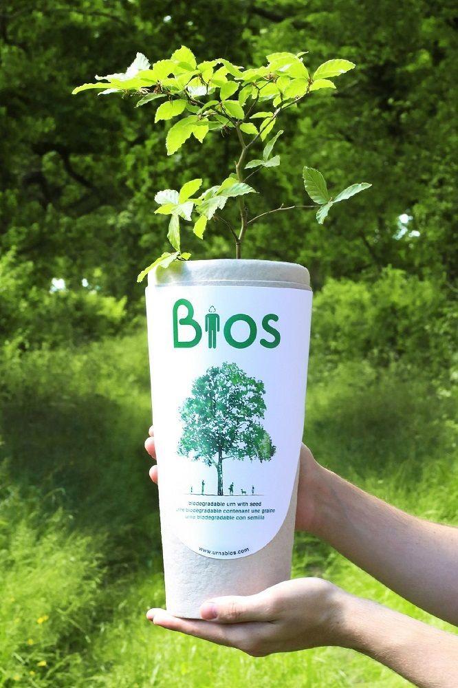 Bios+Biodegradable+Urn