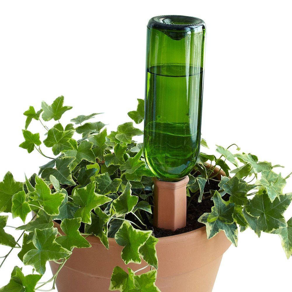 Wine Bottle Plant Nannies