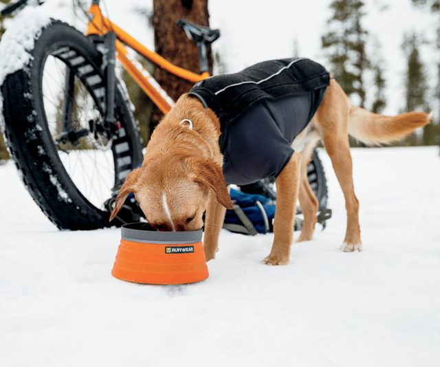Bivy Bota Collapsible Dog Bowl