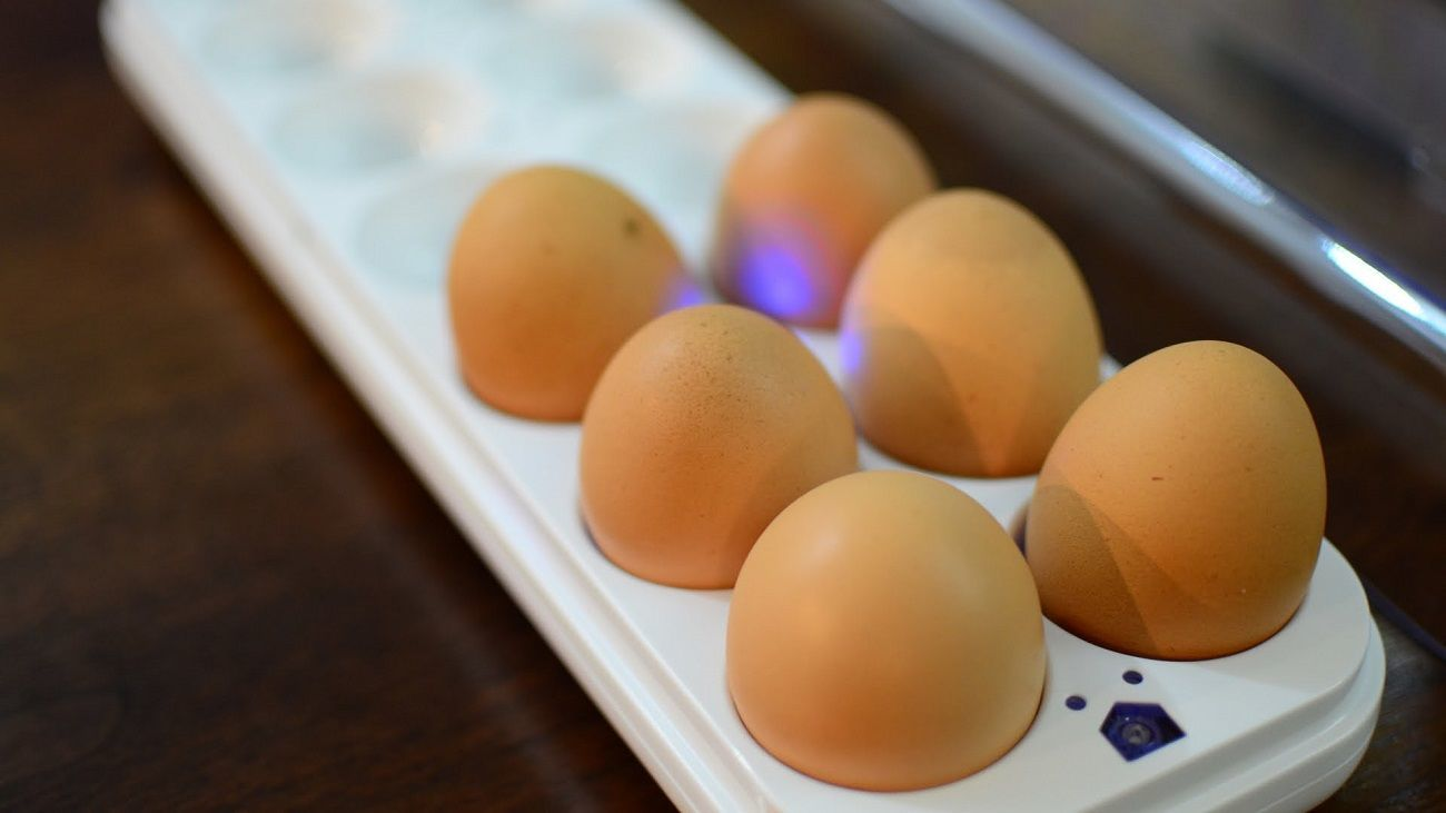 Egg Minder Smart Egg Tray
