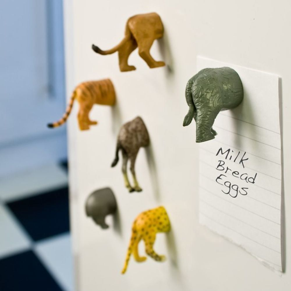 Animal Butt Magnets From Steph Mantis