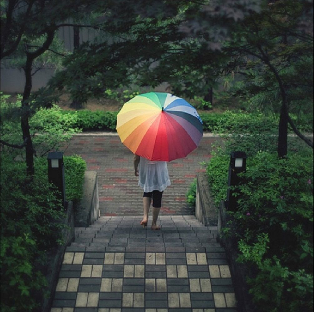 Color Wheel Umbrella 187 Gadget Flow