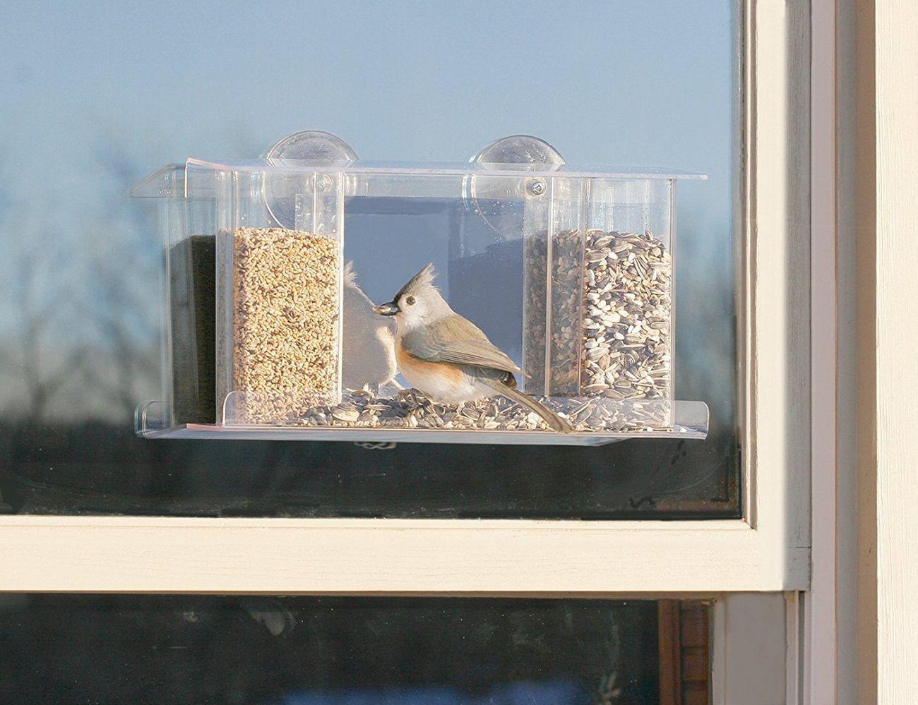 Duncraft One-Way Magic Mirror Window Bird Feeder
