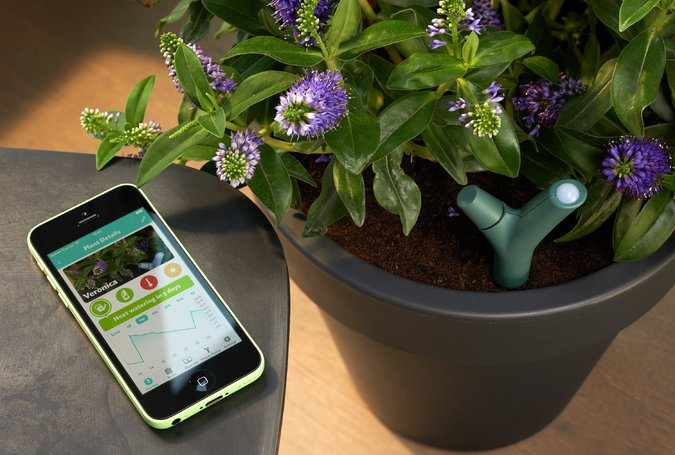 Parrot Flower Power Plant Sensor 187 Gadget Flow