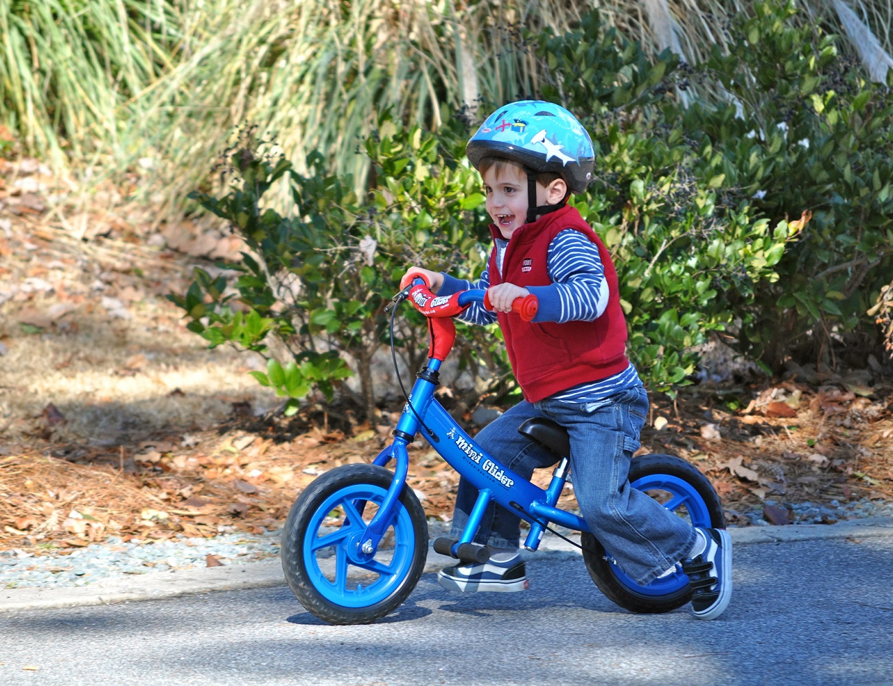 Mini Glider Balance Bikes