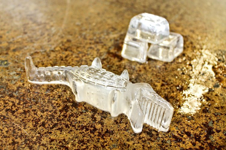 3D Crocodile Ice From Suck UK