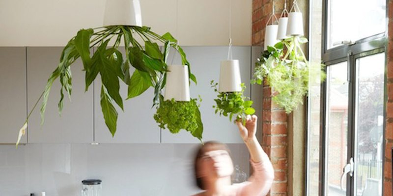 Sky Planter Ceramic Small Triple Pack with Ceiling Extensions