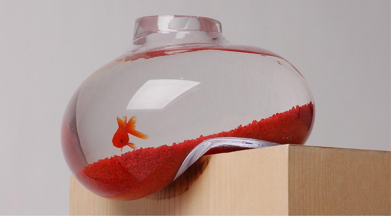 Bubble Tank by Psalt Design
