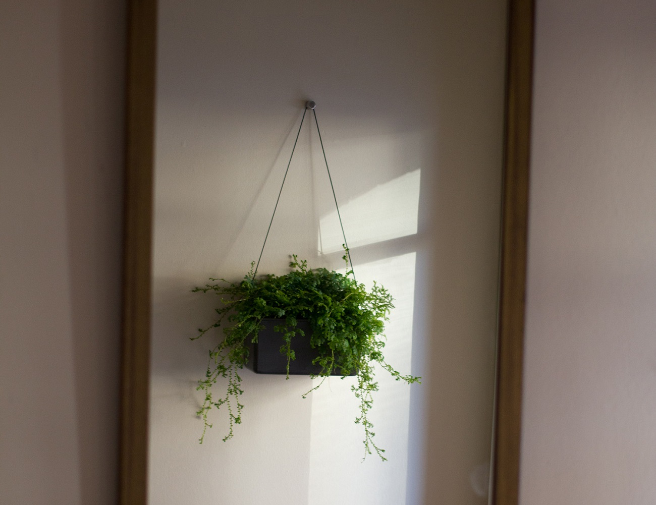 Hängen Wall Planter
