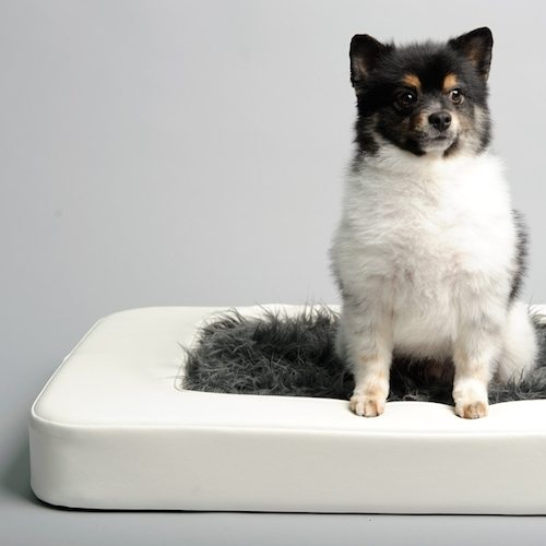 Nesto Pet Bed w/ Faux Fur Mattress