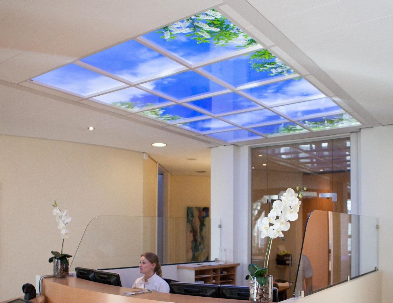 Sky mural ceiling panels gadget flow for Ceiling mural sky