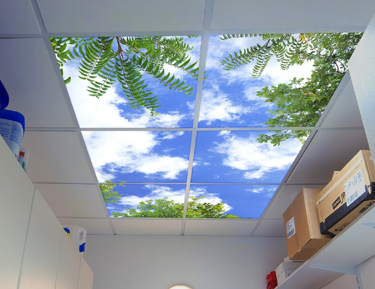 Sky Mural Ceiling Panels