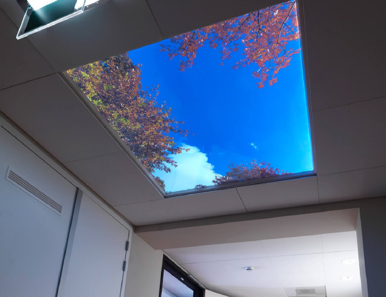 Sky mural ceiling panels gadget flow for Ceiling sky mural