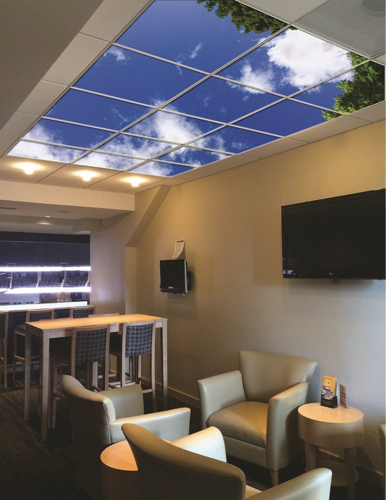 Sky Mural Ceiling Panels 187 Gadget Flow