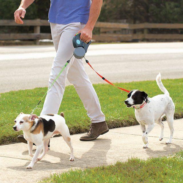 tangle-free-dual-dog-leash