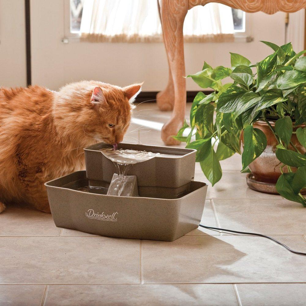 Multi-Tier Pet Fountain