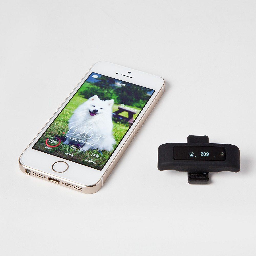 Tractive Motion Pet Activity Tracker