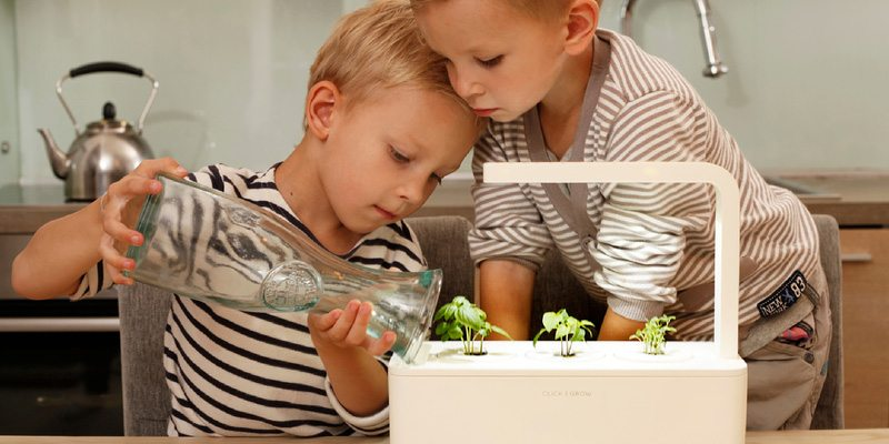 Smart Herb Garden grow plants indoors