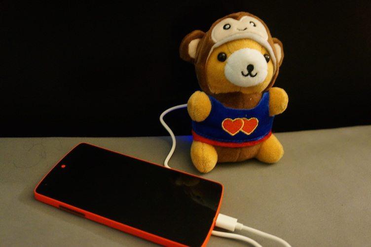 Meet Charlie the Adorable Bear