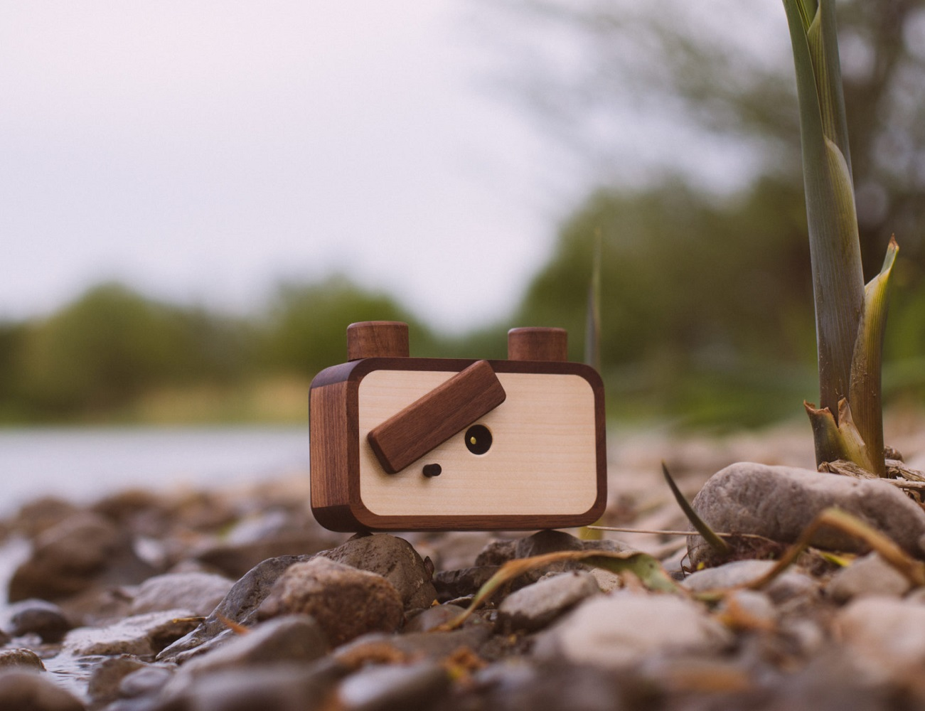 ONDU Pinhole Camera