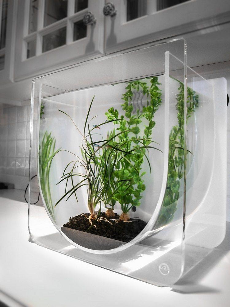 ZeroEdge+Aqua+U+Aquarium