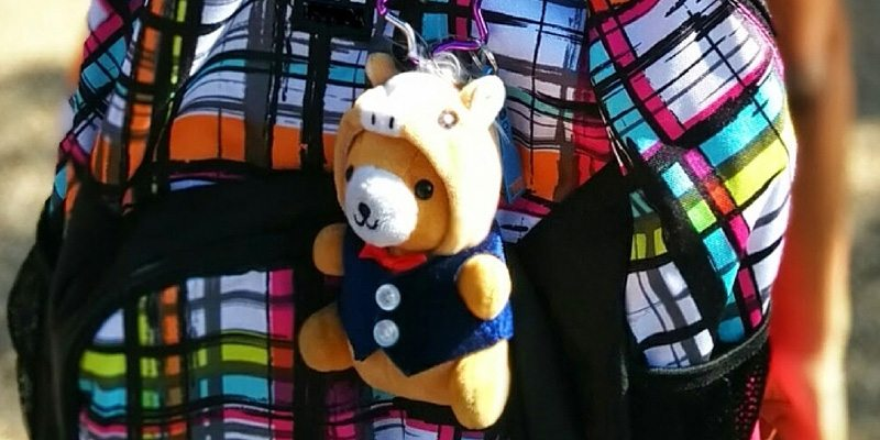 Charlie the ChargeBear crowdfunding campaign