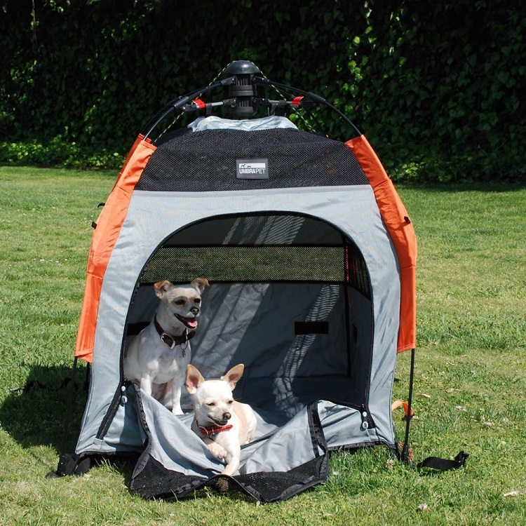Umbra Pet Tent
