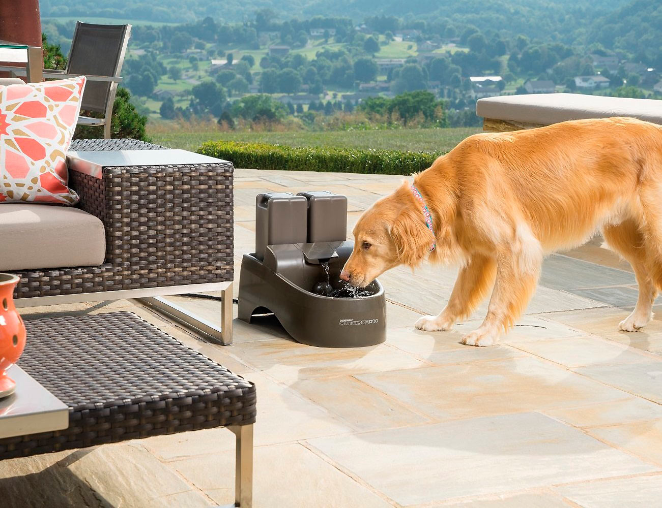 Drinkwell Indoor Outdoor Dog Fountain