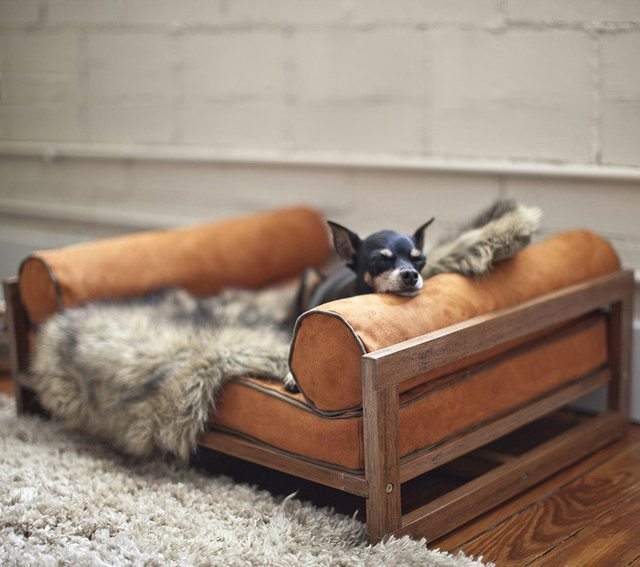 the-aldo-lounger-for-pets-01