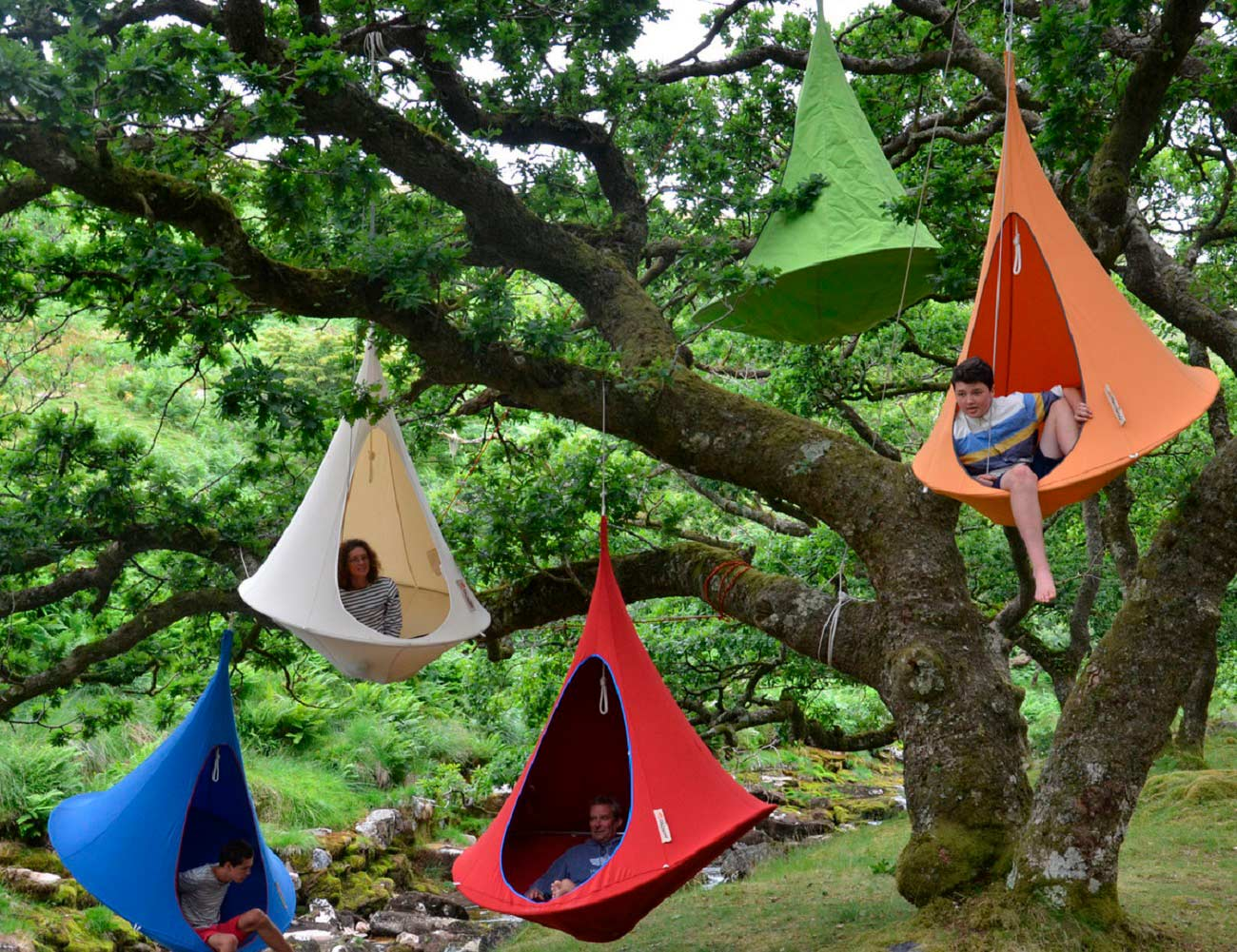 Cacoon+Hangout