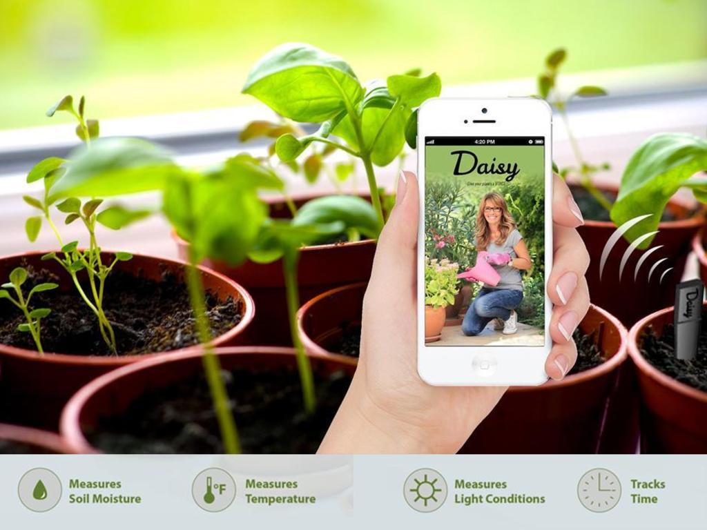 Latest App Makes Caring For Your Plants Fun!