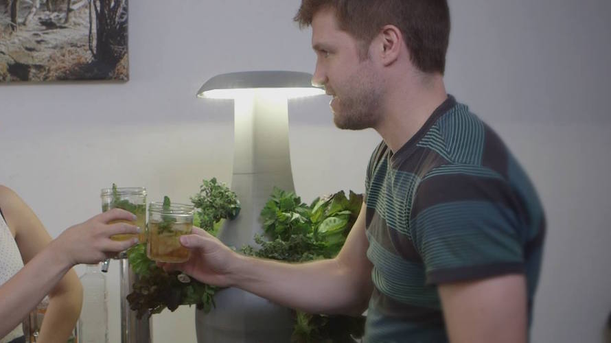 Root: A Smart Countertop Gardening System