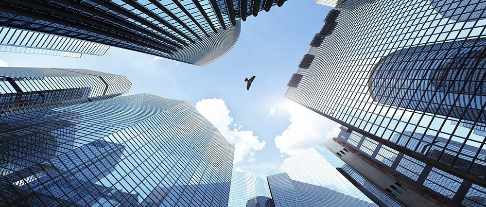 Bionic Bird in the city