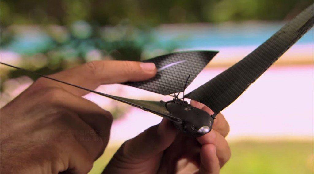 Hand-held Bionic Bird