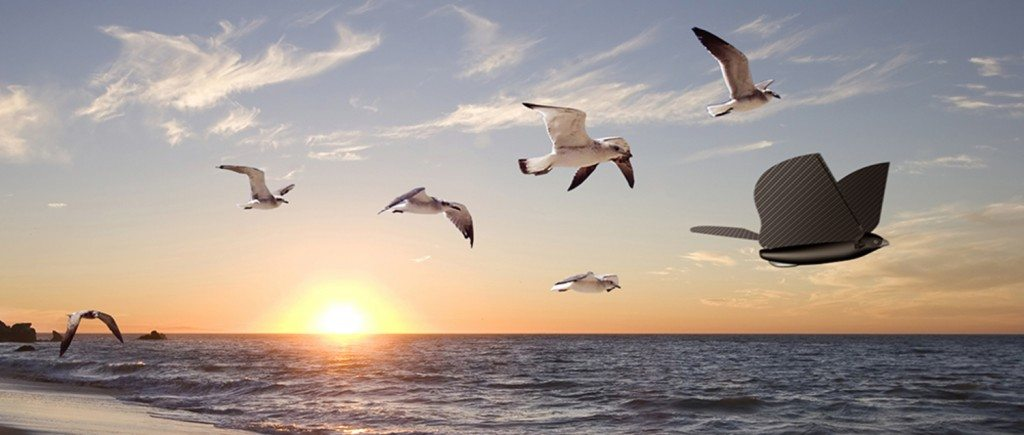 Bionic Bird with seagulls