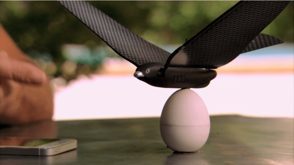 Bionic Bird with egg